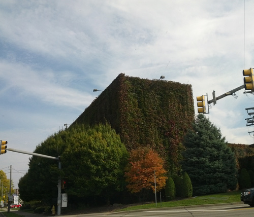 A cool building in Erie, PA